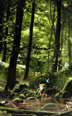 Link in the Forest