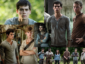 Maze Runner wallpaper