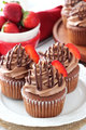 Nutella Cupcakes - cupcakes photo