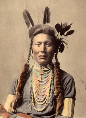 Old Coyote (aka Yellow Dog) gagak Original foto circa 1879 (color tinted circa 1910)