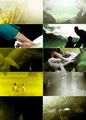 Peeta/Katniss Fanart - The Dandelion In The Spring - peeta-mellark-and-katniss-everdeen fan art