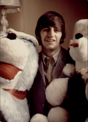 Ringo with his jumbo plushies