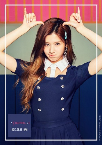 Twice (JYP Ent) achtergrond called Sana's teaser image for 'Signal'