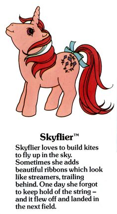 Skyflier Fact File