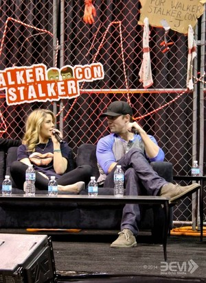 Stephen Amell and Emily Bett Rickards at the 애로우 panel at Walker Stalker Con, March 16th, 2014.