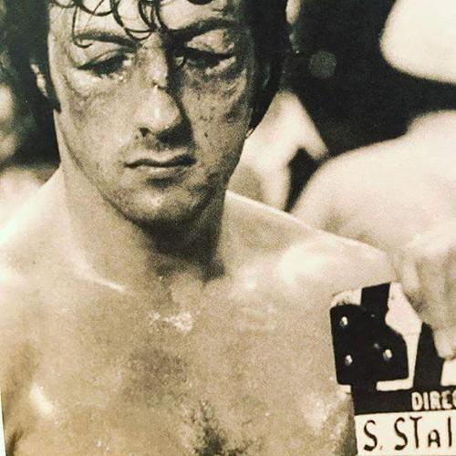 Sylvester Stallone wallpaper titled Sylvester Stallone Rocky