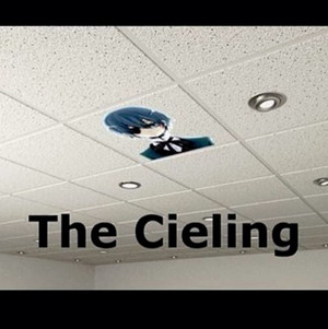 The CIELing xD