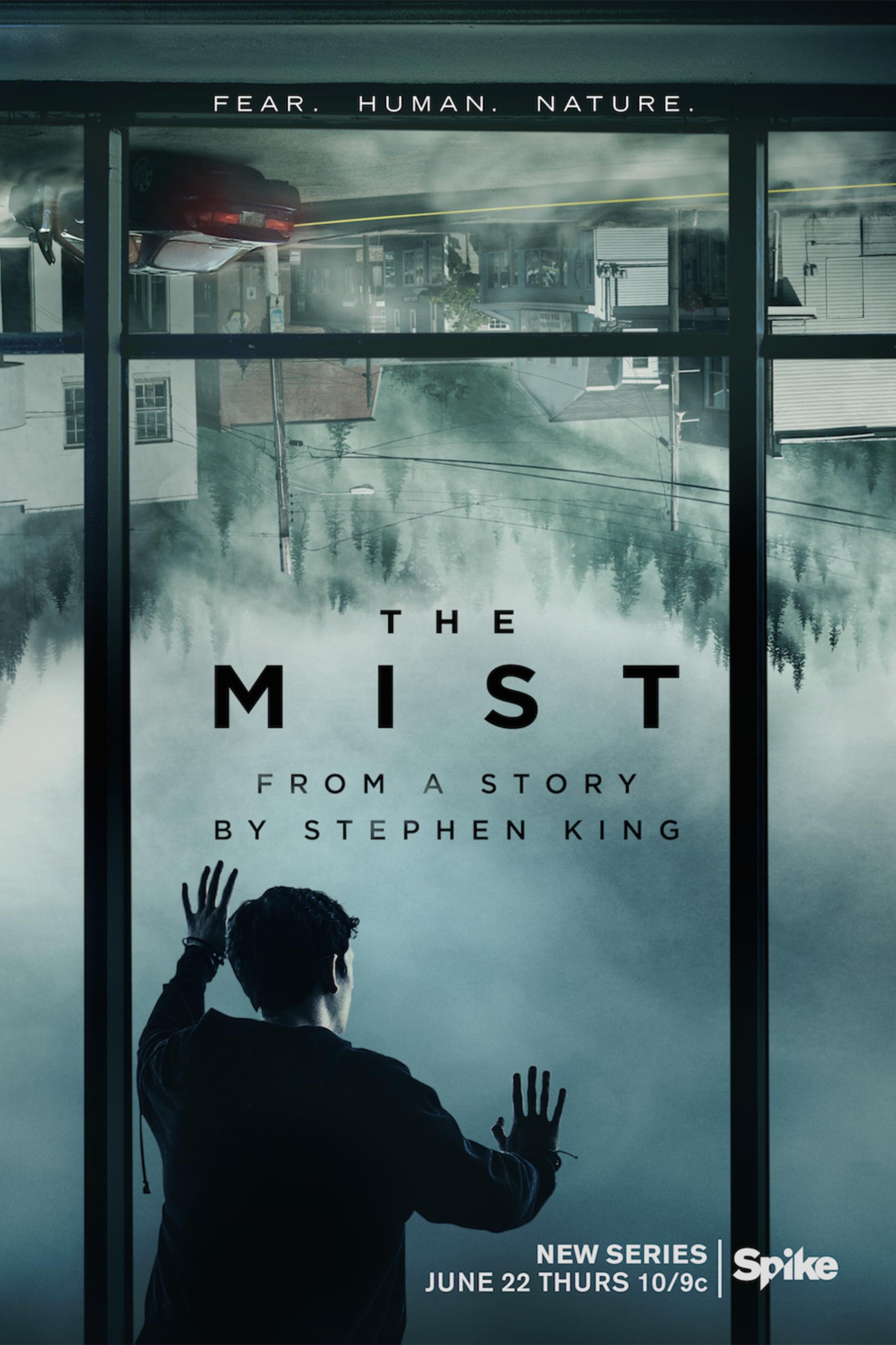 Resultado de imagen de poster the mist