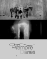 The Vampire Diaries - the-vampire-diaries-tv-show fan art