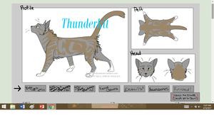 Thunderkit