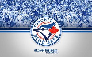 Toronto Blue Jays - amor This Team