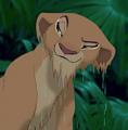 Wet Nala  - the-lion-king photo