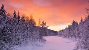 Winter in Finland - Talvi Suomessa (Lapland)