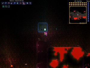 Yet zaidi Terraria Antics...