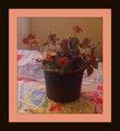 flower arrangement and decor 8