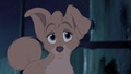 Angel Screenshot Angel lady and the tramp 2 40436395