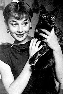 Audrey Hepburn And Her Cat