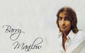 Barry Manilow - the-70s wallpaper