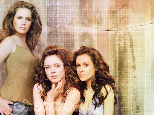 Charmed wallpaper called Charmed