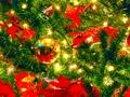 christmas - Christmas🎄🎅 wallpaper