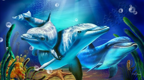 Dolphins Images HD Wallpaper And Background Photos 40475910