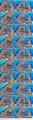 IMG 1360.JPG - spongebob-squarepants photo