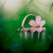 Icon made by me - KanonKyu - flowers icon