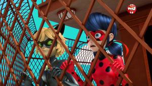 Ladybug and Chat Noir