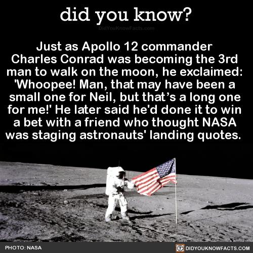 NASA Обои called Landing With Style