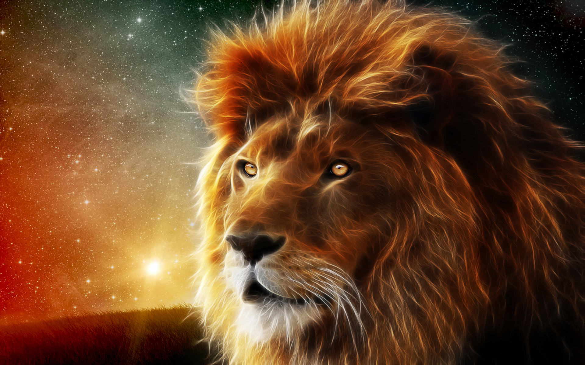 Lions Images Lion Hd Wallpaper And Background Photos 40455258