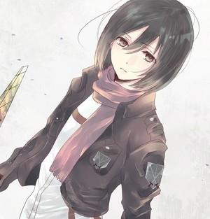 Mikasa Ackerman image mikasa ackerman 36470580 480 500