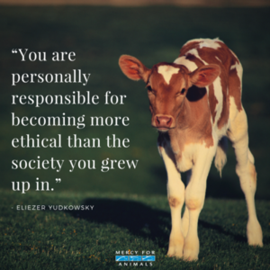 madami Ethical