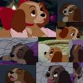 Puppy Lady