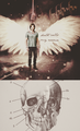 Sam - supernatural fan art