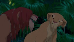 Simba and Nala Wet