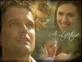 Sydney & Danny ~ True Love - sydney-bristow wallpaper