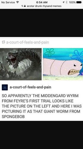 A court of thorns and バラ series 壁紙 called The Middengard Wyrm
