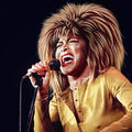Tina Turner  - the-80s fan art