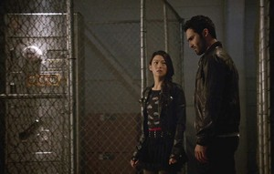 Tyler Hoechlin as Derek Hale in Teen chó sói, sói - Riddled (3x18)