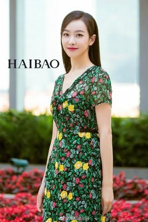 Victoria - Haibao Weibo Update