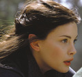 Arwen - lord-of-the-rings photo