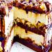 Chocolate - chocolate icon