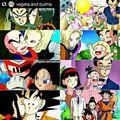 Dragon Ball Family - dragon-ball-z photo