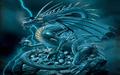 Dragon Wallpaper dragons 13975620 1280 800 - dragons photo