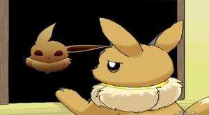 Eevees Reflection