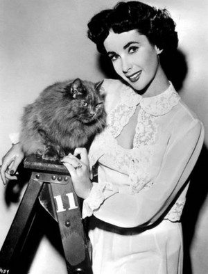 Elizabeth Taylor And Her Cat