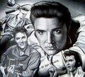 Elvis Presley  - celebrities-who-died-young fan art