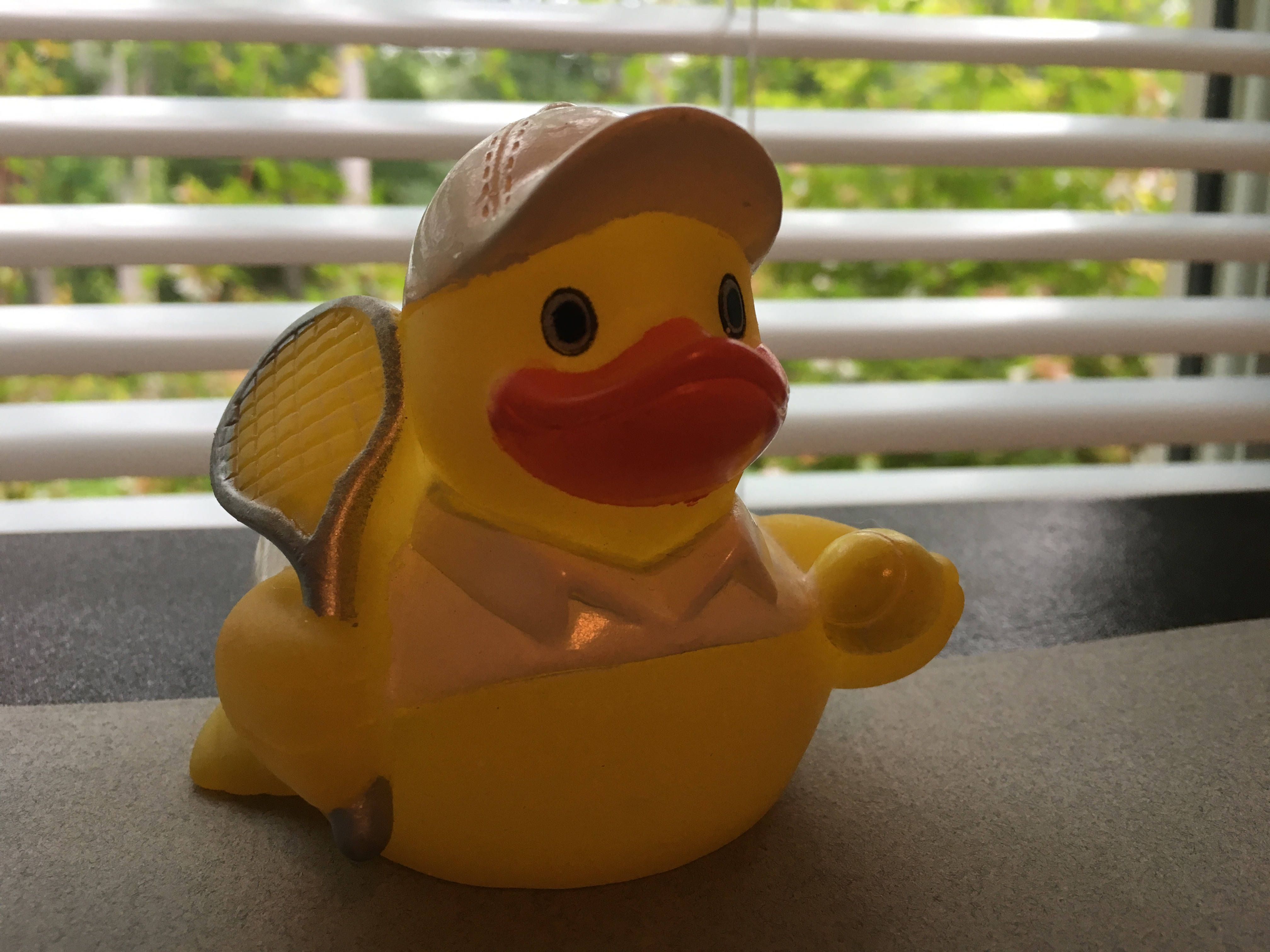 Rubber Ducks images IMG 0728.JPG HD wallpaper and background photos ...