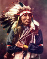 James Lone Elk, nephew of Old American Horse (Oglala Lakota) Early 1900s (Colorado)