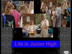 Life in Junior High